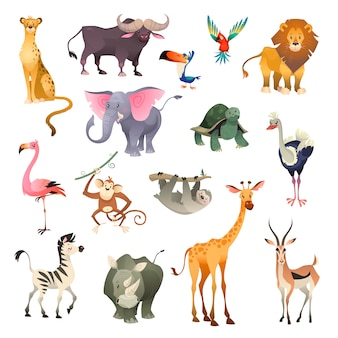 ジャングルの野生動物。サバンナの森動物鳥サファリ自然アフリカ熱帯のエキゾチックな森海洋哺乳類、漫画セット