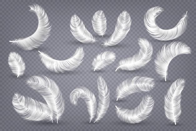 現実的な羽。ふわふわの白いガチョウと白鳥の羽、無重力プルームの分離