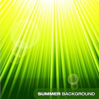 夏のサンバースト緑の背景