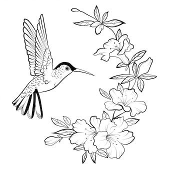 Иллюстрация колибри. стилизованная летающая птица. линейный арт.
