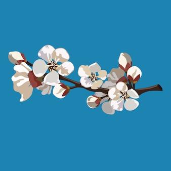 Ветка с цветами сакуры. иллюстрация шаржа вишневого цвета весной. рисование для детей.