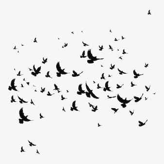 Силуэт стая птиц. черные контуры летающих птиц. летающие голуби.