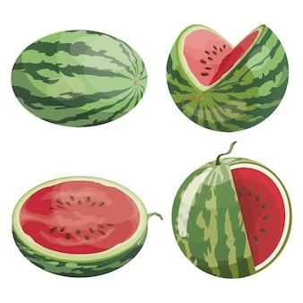 Набор кусочков арбуза. сбор нарезанного арбуза. иллюстрации для детей.