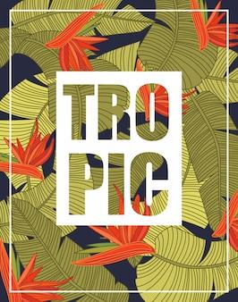 Тропический фон с буквами