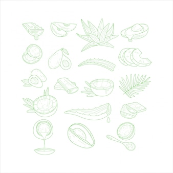 Набор из алоэ, авокадо и кокоса