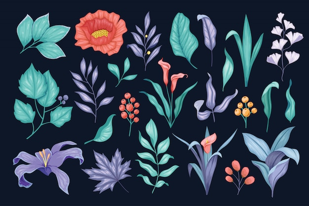 Красивые старинные рисованной цветочные коллекции