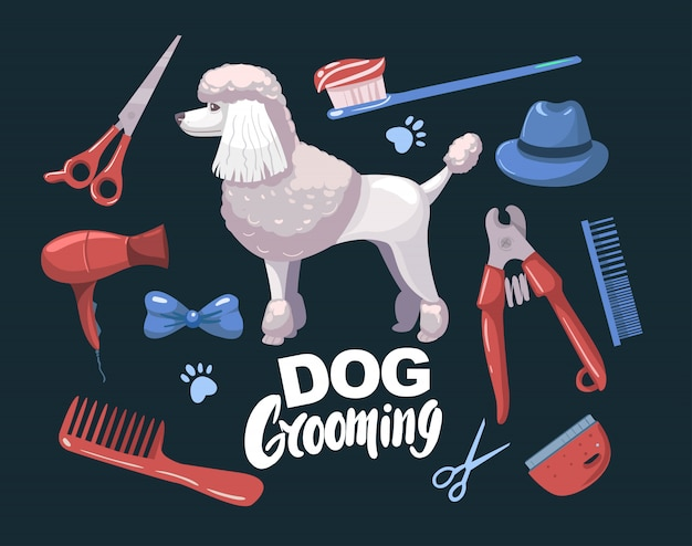 犬の毛繕い