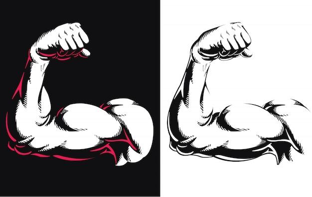 シルエット腕二頭筋筋肉ボディービルジムフィットネスポーズを屈曲白い背景の上のアイコンロゴ分離イラストを閉じる