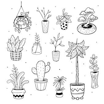 Графическое изображение растения горшок каракули