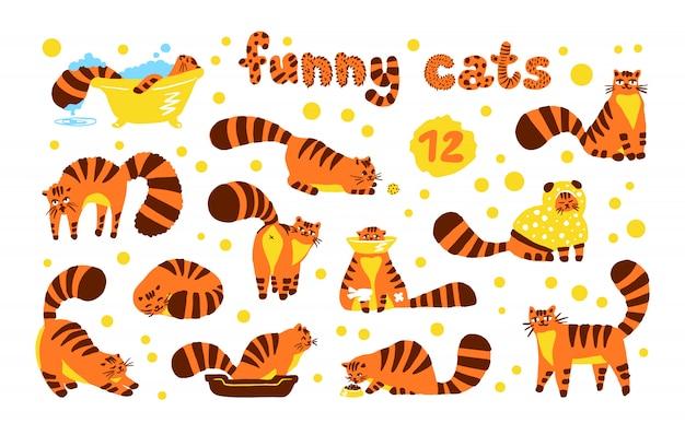 面白い内気な猫、イラストのセットは、分離されたオレンジ色の文字を色します。フラット手描き漫画スタイルのかわいい子猫コレクション