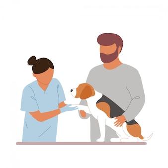 女性獣医検査ビーグル犬