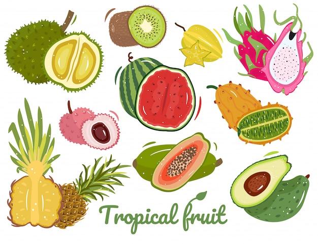熱帯の夏の果物のセット。エキゾチックなフルーツ:ドリアン、キウイ、スイカ、ライチ、パイナップル、パパイヤ、アボカド、キワノ、ゴレンシ、ドラゴンフルーツ。果物を切る。白で隔離の図。