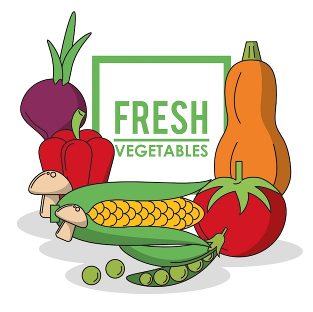 新鮮な野菜のセットとカラフルなポスター