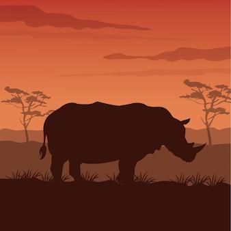 Закат африканский пейзаж с силуэтом носорог стоять