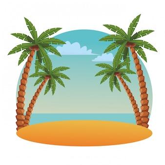 ビーチと海のシーン