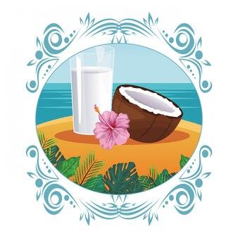 ココナッツ水ガラス