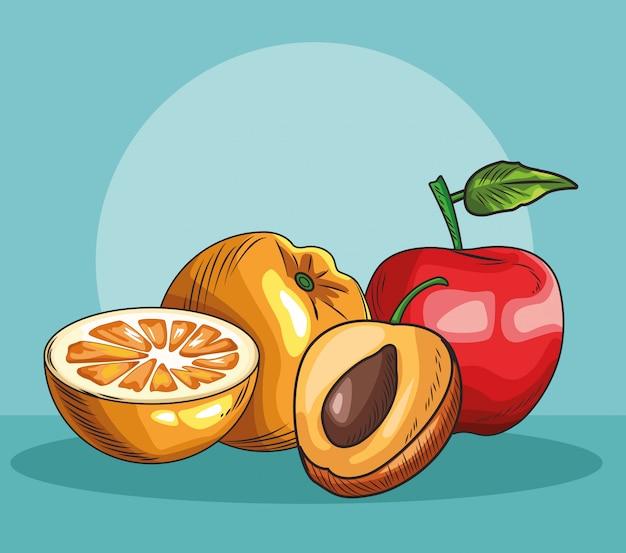 手描きの果物