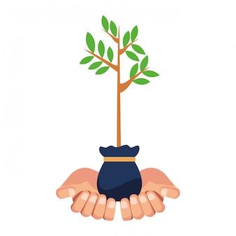 成長バッグに植物を持っている手