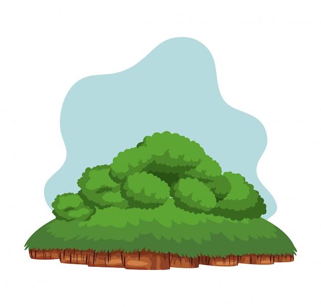 地面の上の低木