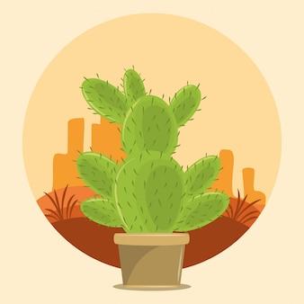 砂漠のサボテン多肉植物ポット
