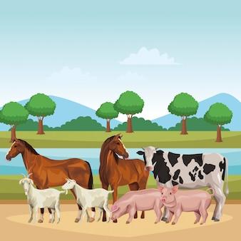 Конская корова свинья и коза
