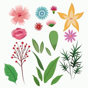 Коллекция цветов весенний цветочный сезон