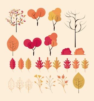 秋の紅葉の木と葉