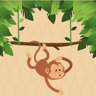 いたずら猿動物