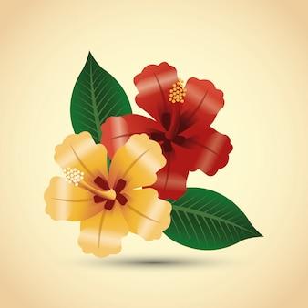 Концепция тропических цветов. значок природы