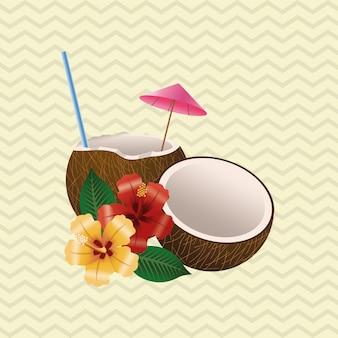 熱帯の花のコンセプト。ココナッツのアイコン
