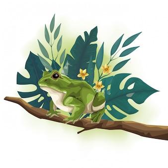 木の枝のシーンで野生のヒキガエル動物