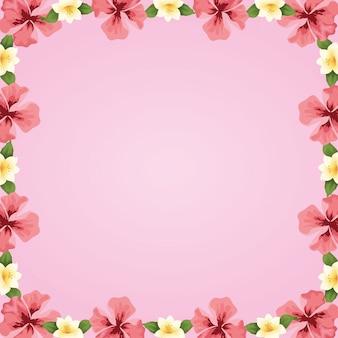 Рамка с цветами тропического гибискуса