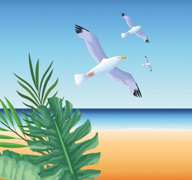 Летнее время на пляжных каникулах чаек тропических экзотических листьев