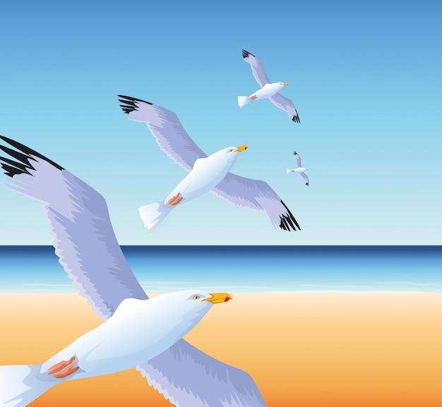 Летний отдых на пляже летающих чаек над морем