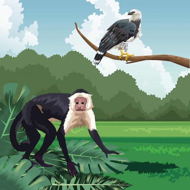 ブランチ熱帯動物相と植物の風景に猿とワシ