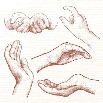 女性の手の手描きの異なるポーズ。何かを支え、手を支える手。ビネッジハンド