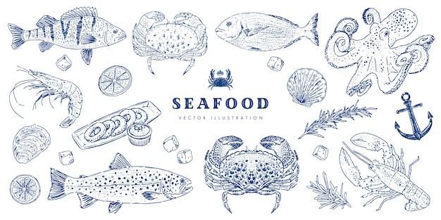 Морепродукты эскиз набор. рука рисования кухни