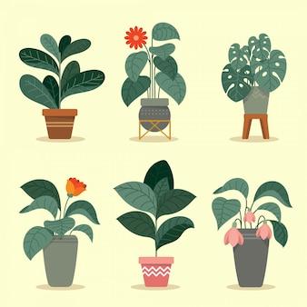 フラット熱帯植物コレクション