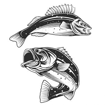 Рыбный логотип. басовая рыба с эмблемой удочки. рыбалка тема иллюстрации.