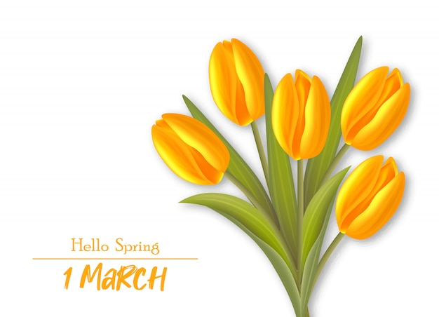 Реалистичные тюльпаны, привет весенний марш иллюстрация
