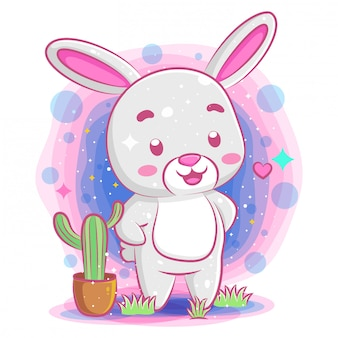 面白いウサギの演奏とポットの中のサボテン