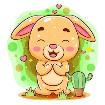 座っていると笑っているかわいい赤ちゃんうさぎがサボテンの花を得ます