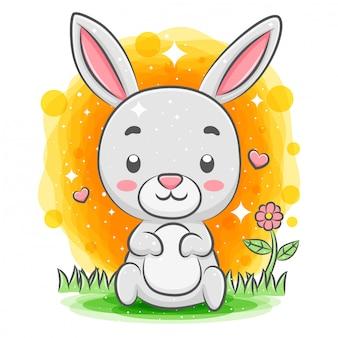 庭に座っている面白いウサギ