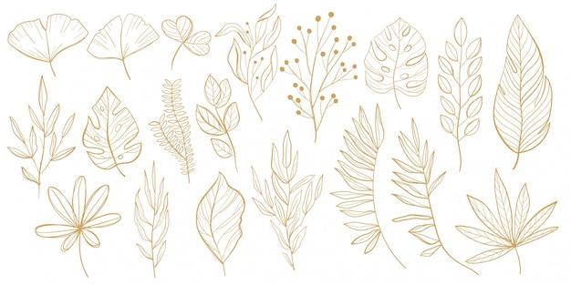 熱帯の葉のセット。ヤシ、ファンパーム、モンステラ、バナナの葉のラインスタイル。デザインのための熱帯の葉のスケッチ。