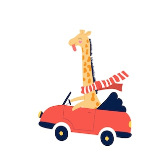 Веселый желтый жираф мчится в красной машине.
