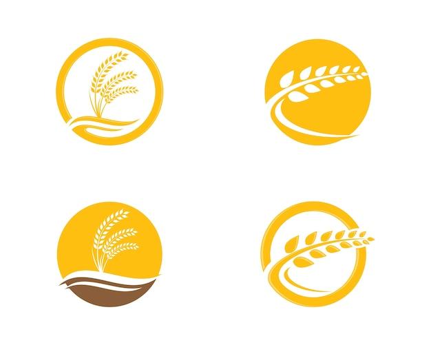 小麦ロゴテンプレートベクトル
