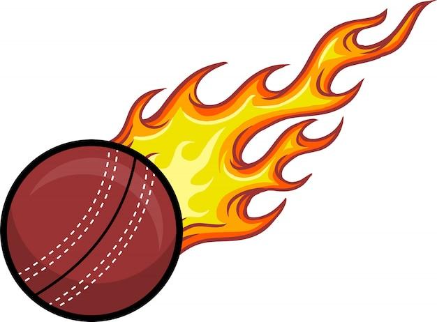 Крикет мяч