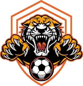 Тигр футбол