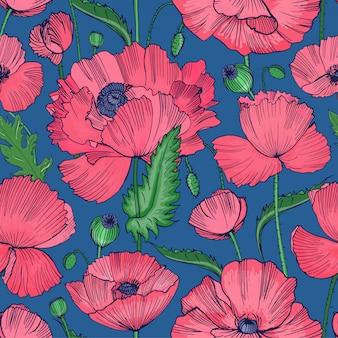 青い背景に描かれた美しい咲く野生のケシの花、葉、種子の頭の手で自然なシームレスパターン。
