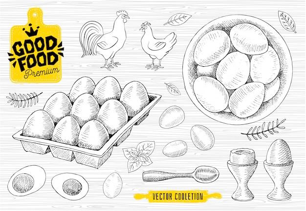 卵、プレート、ハン、卵トレイのセット。生卵、朝食、スプーン、スケッチスタイル、白い背景。グッドフードプレミアムマーケット、ロゴデザイン、ショップ。
